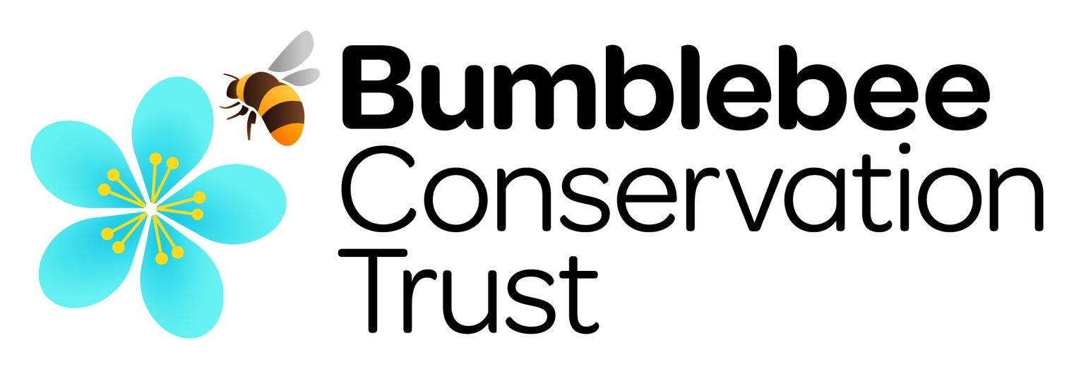 Bumblebee Sonservation Trust Logo
